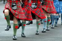 Шотландские коленки