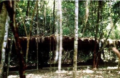 Индейское селение в джунглях