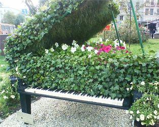 Рояль из цветов
