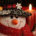 Рождественский гусь, или почти детективная история.