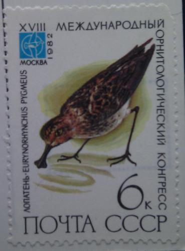 ссср орнитологический конгресс