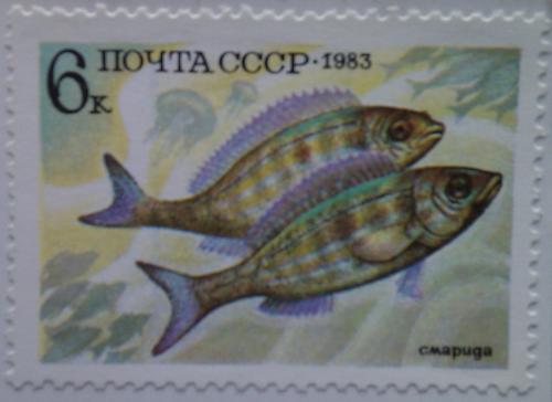 ссср рыбы