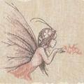 Волшебная пыльца