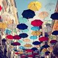 Лучшие зонтики во всем Лондоне