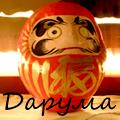 Дарума