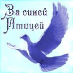 """Литературная гостиная """"За синей птицей"""""""