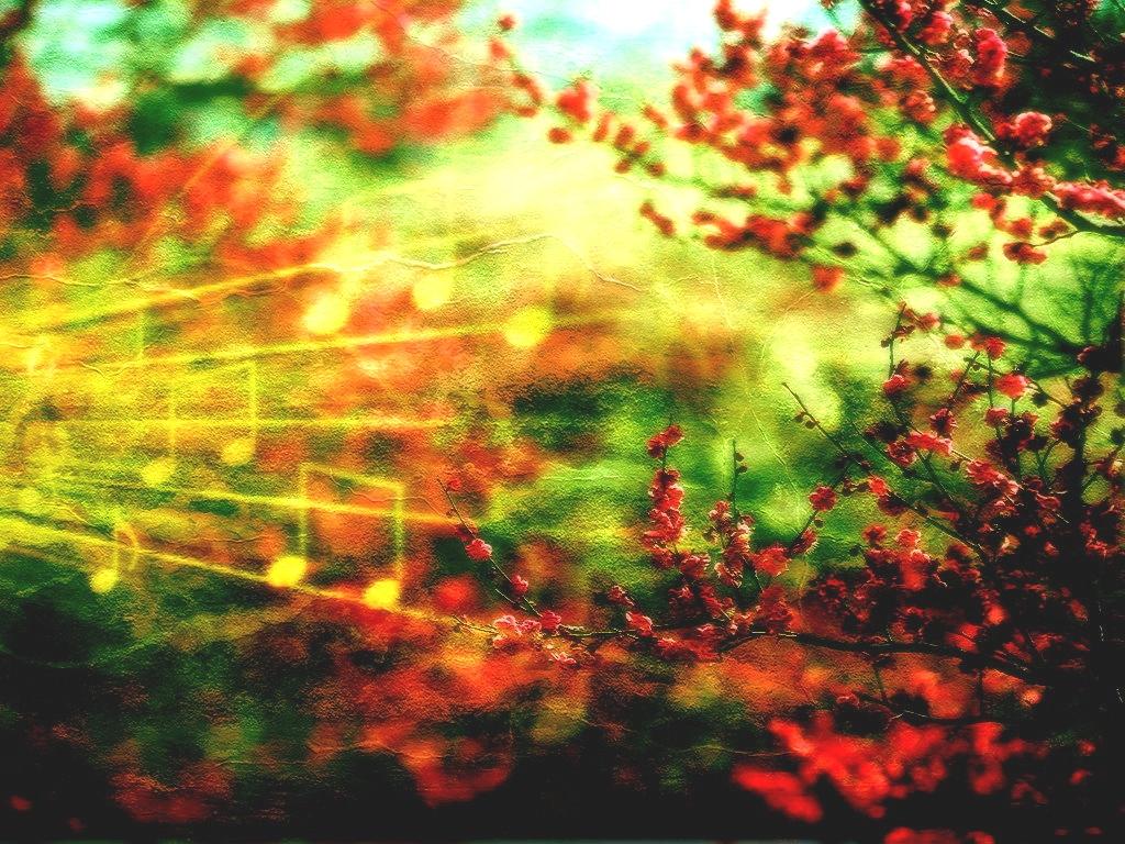 25 цветение visionary