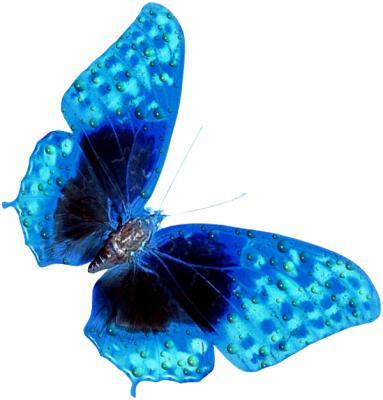 """Предпросмотр - Схема вышивки  """"Синяя бабочка """" - Схемы автора  """"Melisenta """" - Вышивка крестом."""